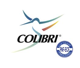 logo-Colibri-VallorSolucoes